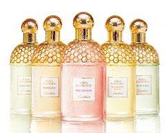 Parfumuri Guerlain Aqua Allegoria