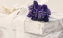 Ulei esential de lavanda – beneficii si recomandari